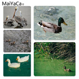 MaiYaCa Custom Skin Floating duck Customized MousePads Computer Laptop Anime Mouse Mat Size for 250x290x2mm Rubber Mousemats - one46.com.au