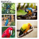 MaiYaCa Parrot Large Mouse pad PC Computer mat Size for 18x22x0.2cm Gaming Mousepads - one46.com.au