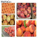 MaiYaCa Funny Peach Laptop Computer Mousepad Size for 18x22cm 25x29cm Small Mousepad - one46.com.au