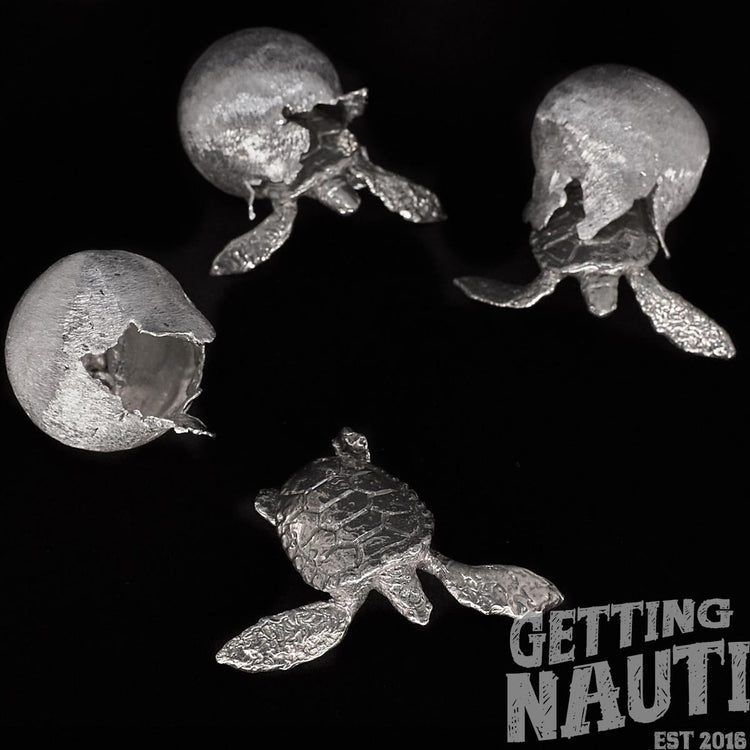 Getting Nauti With Sea Turtle Hatchlings and Conservation