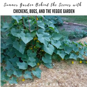 Summer Garden Behind the Scenes with Chickens, Bugs, and Constructing Wooden Tomato Stakes