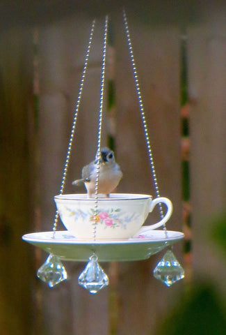 The Bird Feeder