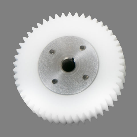 Spur Gear (all models)
