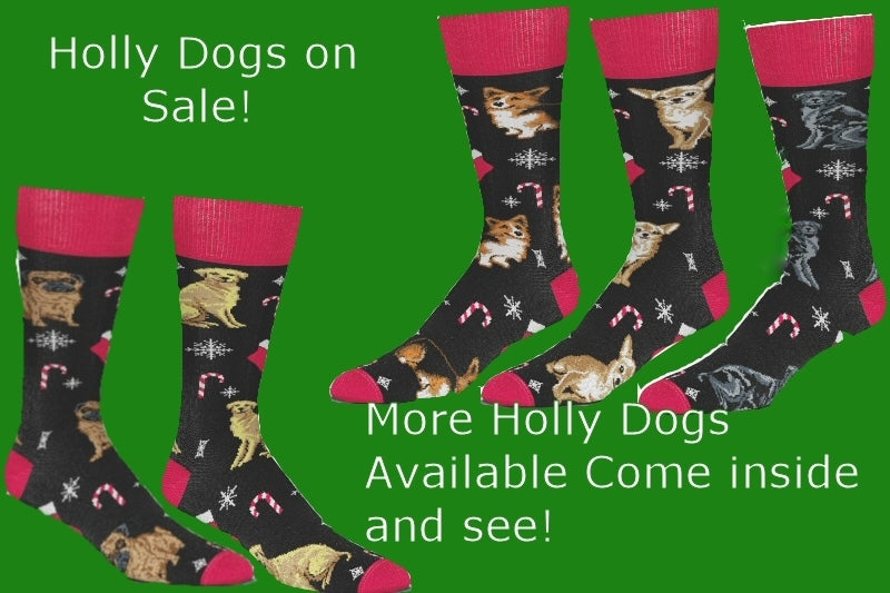 More Holy Dogs on Sale Come inside & See