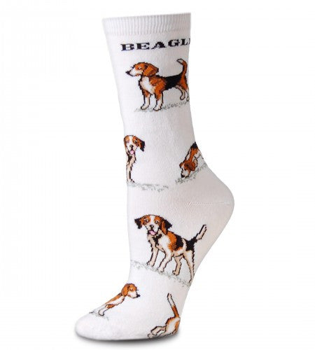 FBF Beagle Poses 2 Socks are on a background of Bright White. Beagle is written under the Cuff. Beagles in Dark Brown, Black and White are in different Poses all over the Sock.