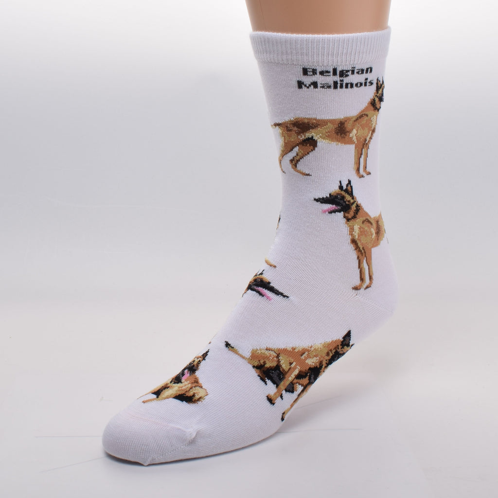 FBF Belgian Malinois Poses Sock starts on a White background. It has Belgian Malinois in bold print at the top of the sock. The poses are Standing, Laying Down and Sitting. Colors include Fawn, Sable and Black.