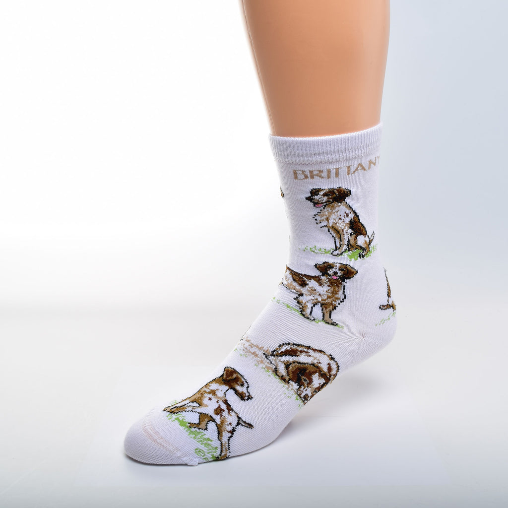 FBF Brittany Spaniel Poses Sock on Bright White with Tan Brittany on Top in Bold Print and several poses all over.