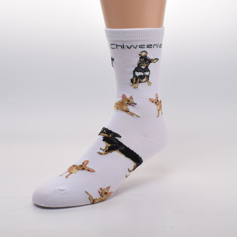On a White background FBF adds in Bold Black Print under the Cuff Chiweenie. Then Poses of different Chiweenies are placed over the sock. Some look more like Dachshunds others a little more like Chihuahuas.