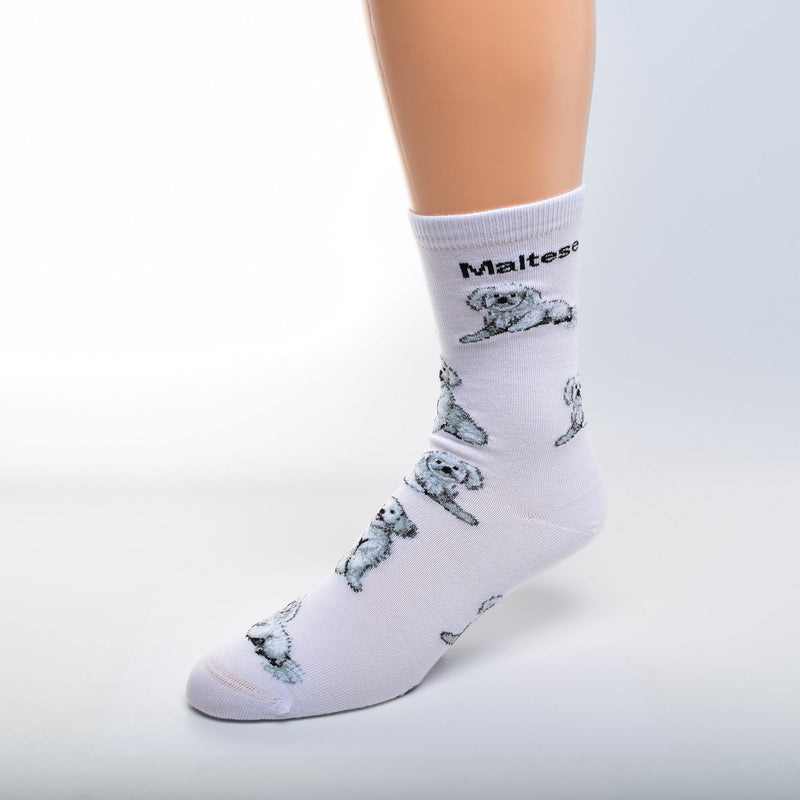 For Bare Feet Maltese Poses Sock starts on a White background with Maltese in Bold Black Print below the Cuff. The Poses of the Maltese are Sitting and Laying Down. The colors used are White, Black and Grey for the Dogs.