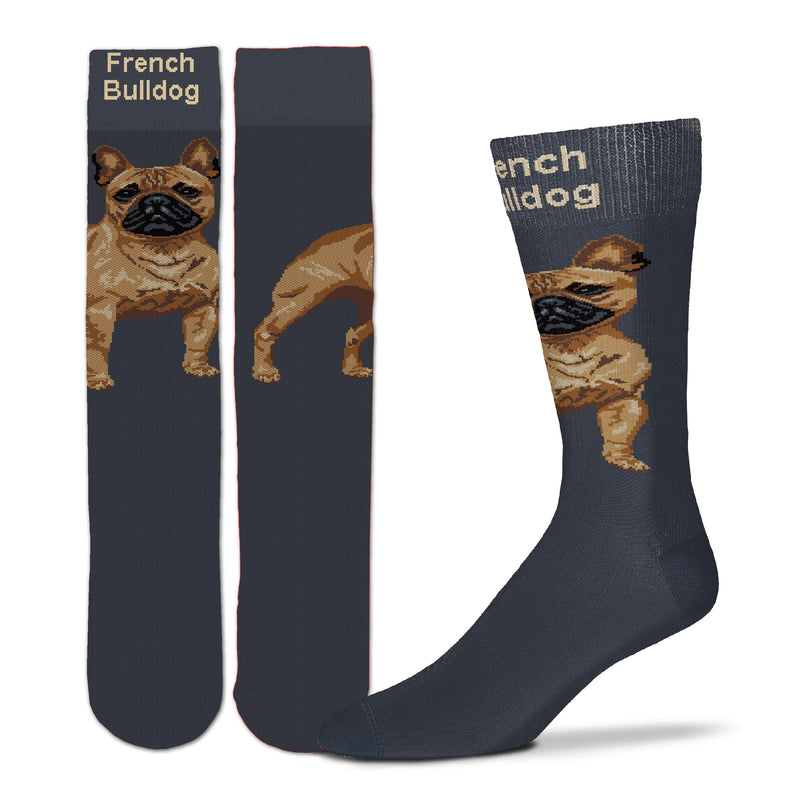 For Bare Feet Realistic French Bulldog Sock begins on a Charcoal sock. The 2 inch wide Cuff has the words French Bulldog in Buff Color. Standing on the top of the foot is the Fawn Colored French Bulldog. Looking out as you walk.