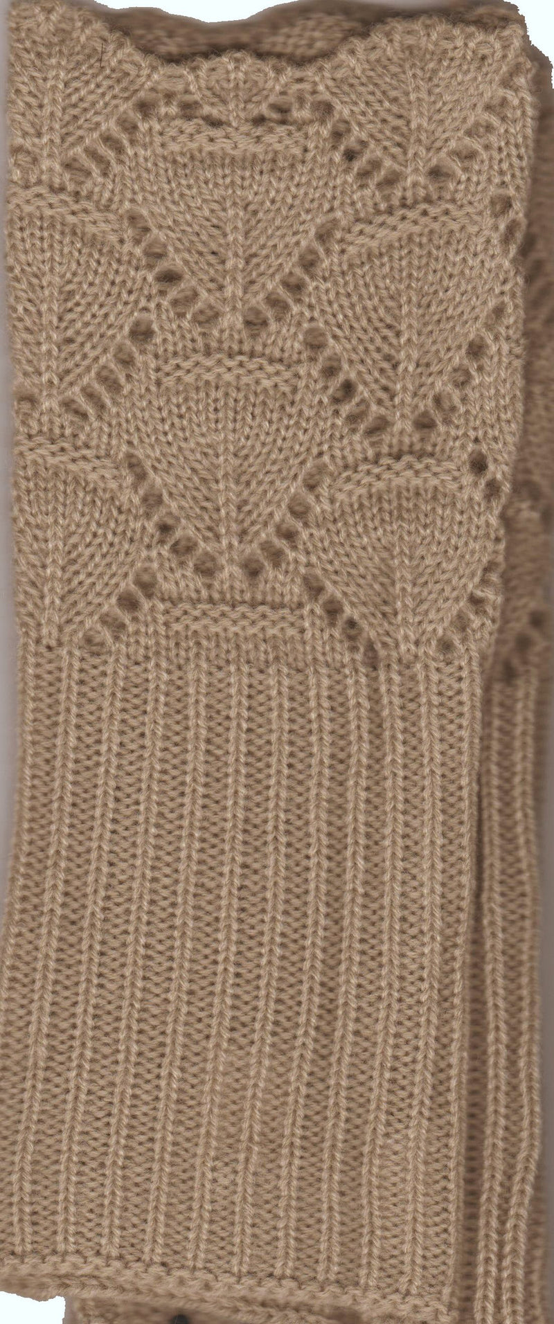 Camel Lace and Scallop Edge Design Lauer Glove for Petite Hands