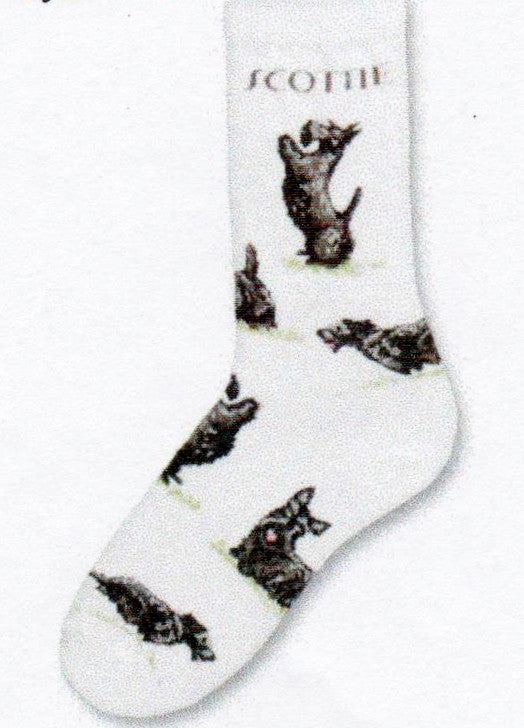 FBF Scottie Dog Poses 2 Socks start on a Bright White background with the Word Scottie in bold Black print. The Scottie has several poses on this sock. One is up on his hind feet wanting up. All are Black and Grey Coats.