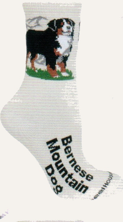 Wheel House Designs 2014 Designer Collection shows the Bernese Mt Dog on Green Grass in a Mountain Scene. Below is the name of the Dog on the foot Bernese Mountain Dog. Background sock is Natural color.