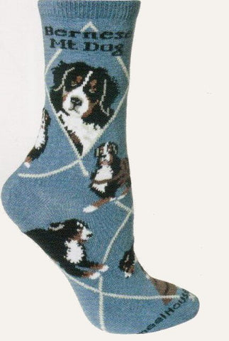 This Bernese Mountain Dog Sock starts on a Blue background with White Lines that make the Diamonds. Bold Black print reads, Bernese Mt. Dog. The portraits show the most common colors and the poses show the Dog with a Cart or doing agility training.