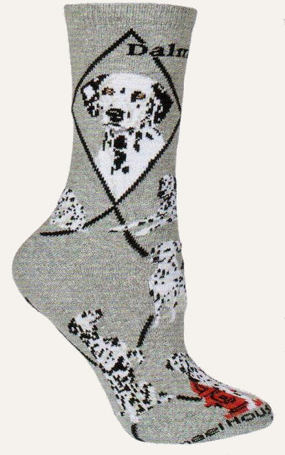 Wheel House Designs Dalmatian Sock is on a Grey background with Black Diamond Lines and Bold Black Print reading Dalmatian. Portraits show each alert spot on Dalmations. The poses are of a puppy playing, adult laying down, one sitting on hindquarters and one by a red fire hydrant.