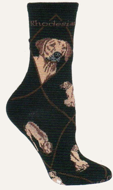 This Sock starts on a Black background with Chocolate Diamond Lines and the Words Rhodesian Ridgeback in Bold Print. The Portraits are both Wheaten Color with Red Brown and Black to finish. The Poses are of Standing, Laying Down and Catching a Scent.
