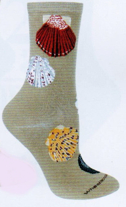 On a sandy color background is Wheel House Designs Sea Shells Sock. It is mostly of  Scallops of different colors. White, Brown, White and Red, Yellow and Red and more.