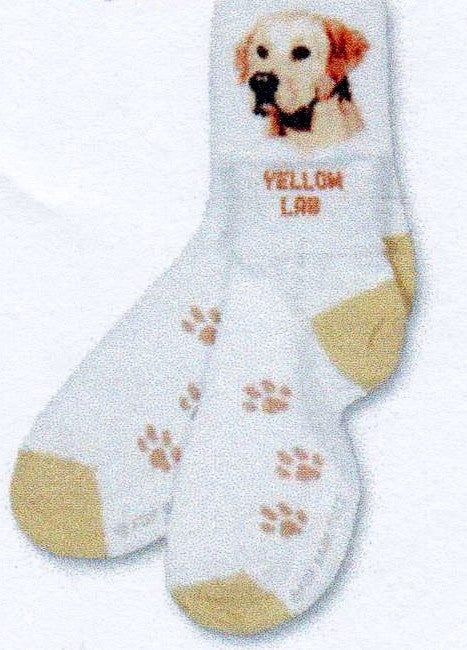 As a Crew you See the Yellow Lab Head and as an Anklet you are able to read the Words in Bold Golden Yellow, Golden Lab. The Heels and Toes are a Yellow Tan and the Paw across the foot are a Medium Tan.
