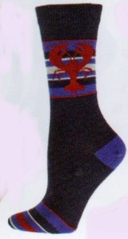 This is the photograph of the sock from b ella shows a little different color.