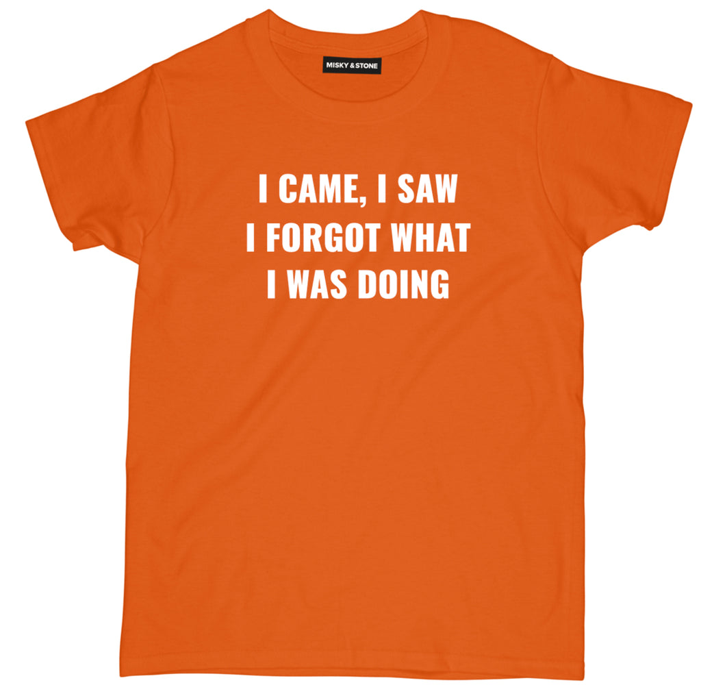 i came i saw shirt, i forgot t shirt, sarcastic t shirts, sarcastic shirts, sarcastic tee shirts, sarcastic tees, sarcastic t shirt sayings, sarcastic t shirts quotes, funny sarcastic t shirts,