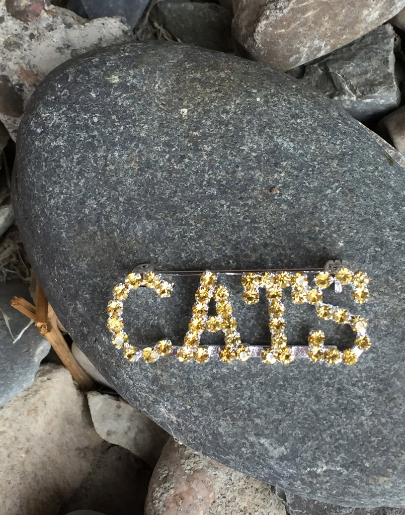 MSU CATS Rhinestone Pin