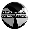 "Don't Let The Bastards Grind You Down (Latin) : 1.25"" Pin"