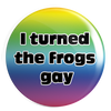 "I Turned the Frogs Gay :  1.25"" Pin"