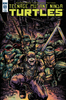 Teenage Mutant Ninja Turtles #69 Sub Cover  (IDW Series)