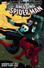 SPIDER-MAN: CRIME AND PUNISHER TP
