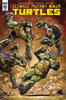 Teenage Mutant Ninja Turtles #60 Main Cover (IDW Series)