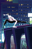 SPIDER-GWEN GHOST-SPIDER #1 SG ANIMATION VARIANT