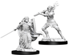 D&D Nolzur's Marvelous Unpainted Miniatures: Female Human Paladin (2)