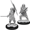 D&D Nolzur's Marvelous Unpainted Minis: W13 Male Human Fighter