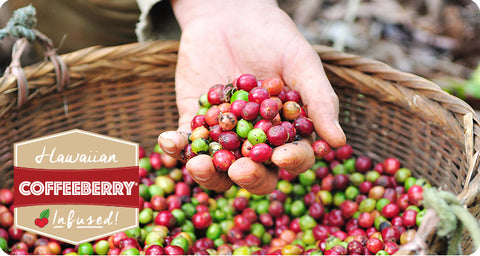 KonaRed® Hawaiian Coffeeberry®