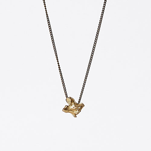 treasure nature bone brass necklace #1