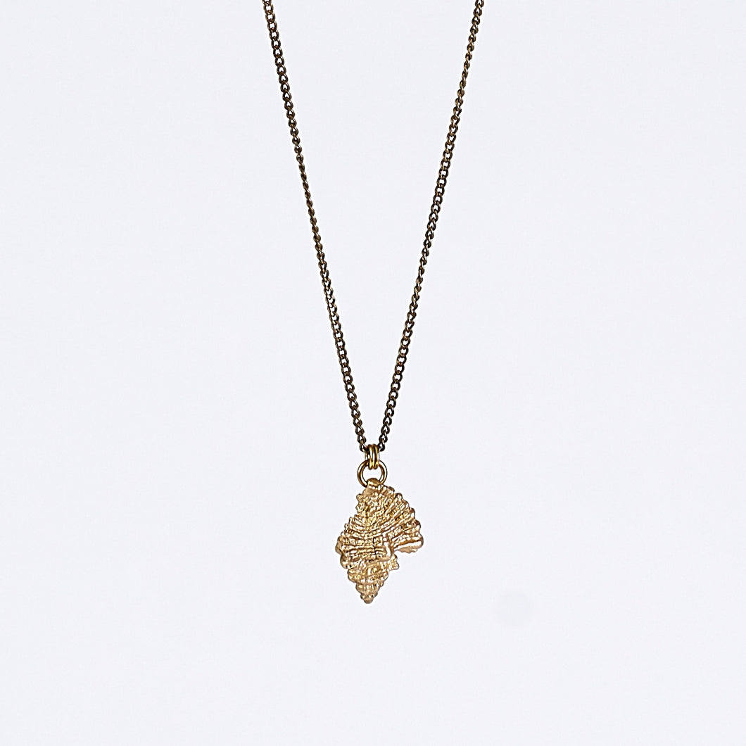treasure nature shell brass necklace #2