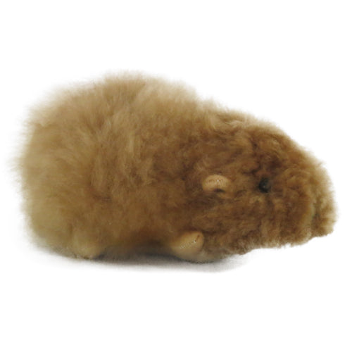 brown alpaca fur guinea pig