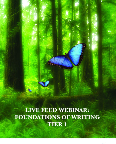 Webinar Course: Foundations of Writing