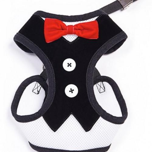 Harness Vest Tuxedo Pet Collar with Red Bow