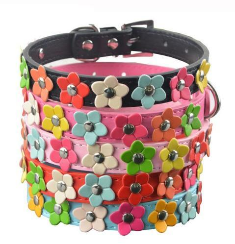 Leather Puppy Pet Dog Collar