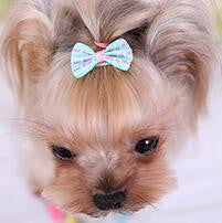 Bows with Clips Puppy Hair Ties
