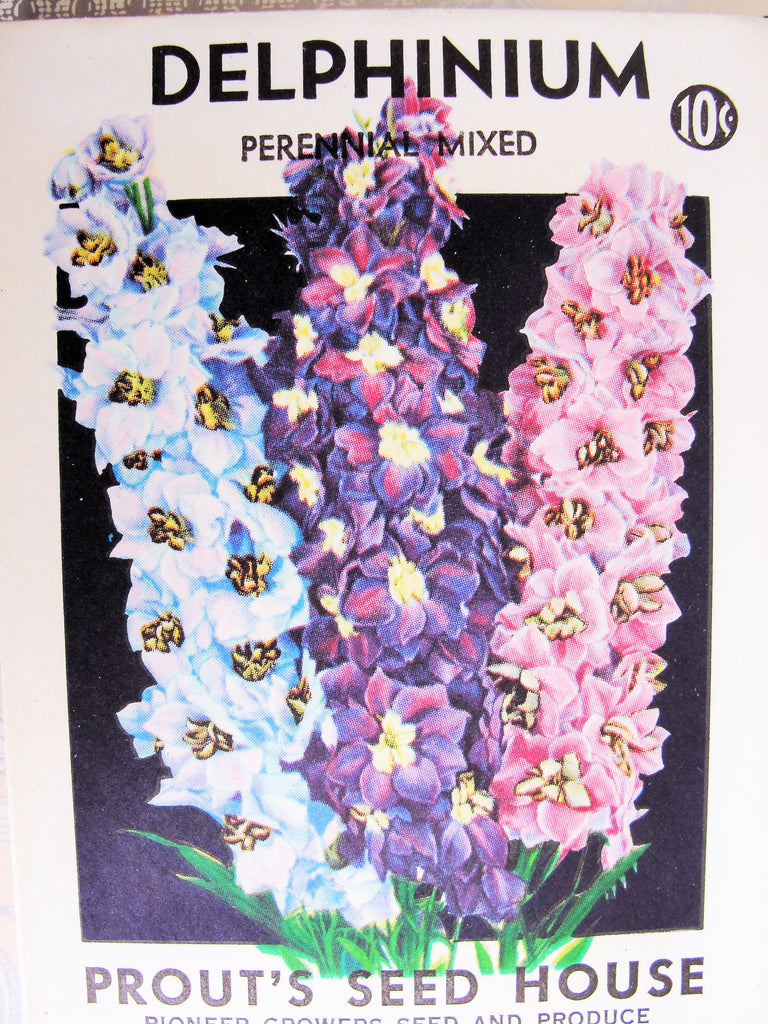 Antique Seed Packet Colorful Delphinium Flowers Suitable To Frame Cottage Chic Decor Scrapbooking Crafts Weddings Gifts