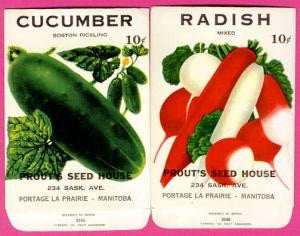 COLORFUL Vintage Vegetable Seed Packets Great To Frame Kitchen Decor Scrapbooking Crafts Wedding