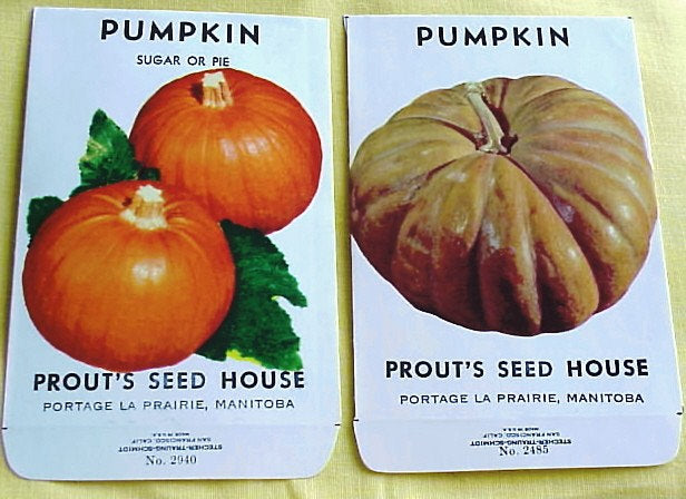 Vintage SEED PACKETS Colorful Pumpkins Suitable To Frame Cottage Chic Decor Scrapbooking Crafts Weddings Gifts Halloween, Farmhouse Decor