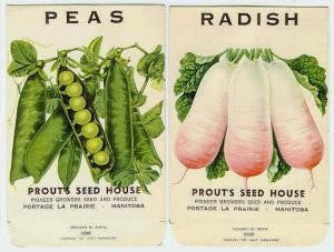 VINTAGE Vegetable Seed Packets Radish, Peas Great Kitchen Decor Scrapbooking Crafts Weddings etc