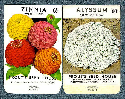 Vintage FLORAL SEED PACKETS Never Used Perfect For Framing Crafts Scrapbooking Collages Gardening Collectibles