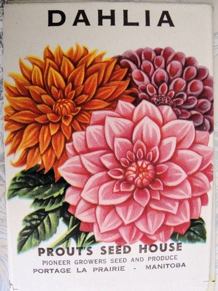 Beautiful VINTAGE Seed Packet Perfect To Frame Great Gift For Gardener, Scrapbooking,French Cottage ,Farmhouse Decor Wedding Place Holders