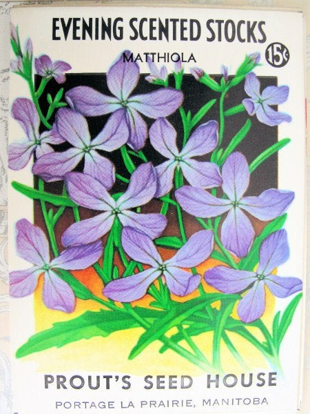 LOVELY Vintage Seed Packet Beautiful Decorative Colorful Perfect To Frame French Cottage Decor Weddings Gardening