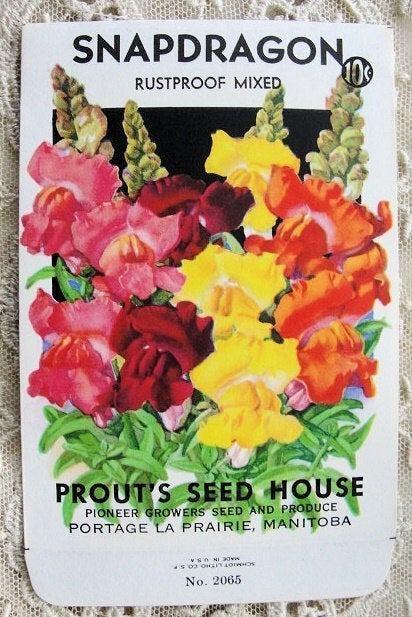 Antique Seed Packet, Colorful Flowers, Suitable To Frame ,Cottage Chic, Farmhouse, French Country Decor ,Scrapbooking,Crafts, Weddings Gifts