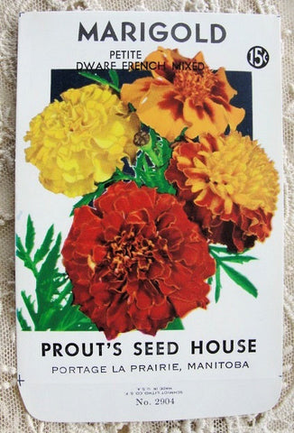 Antique SEED PACKET Colorful Flowers Suitable To Frame Cottage Chic Decor Scrapbooking Crafts Weddings Gifts Great For Gardener
